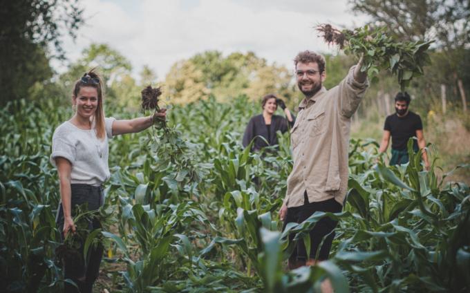 ErnteErfolg: Landwirtschaft erlebbar machen