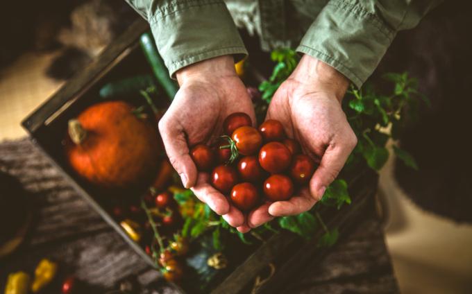 OURZ – Transparenz in der Lebensmittelindustrie